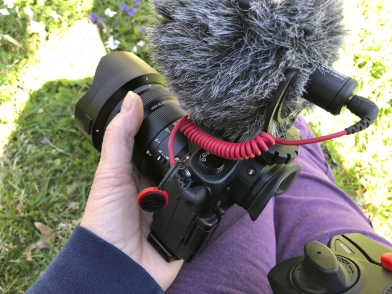 Peak Design anchor doubles for a mic cable holder